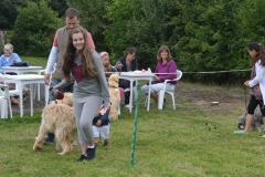 2013-08-24 DOGSHOW 019 (Copy)