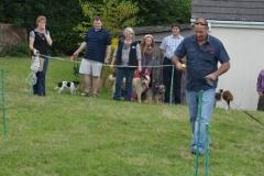 2013-08-24 DOGSHOW 023 (Copy)