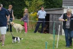 2013-08-24 DOGSHOW 024 (Copy)